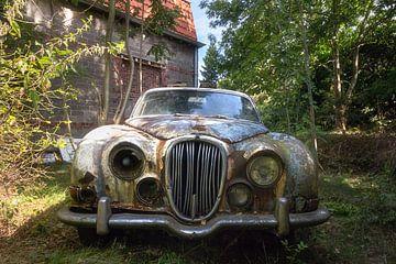 Verlorene Jaguar. von