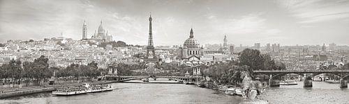 Panorama Parijs met een knipoog van