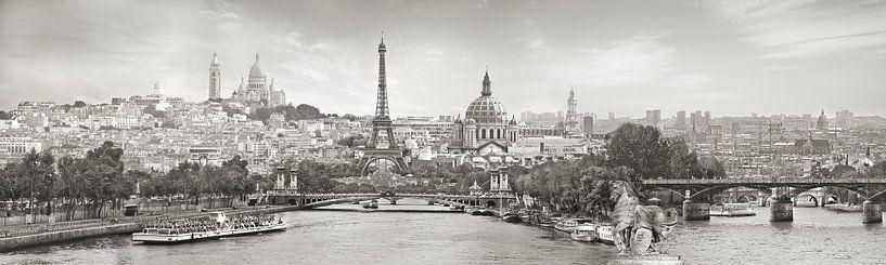 Panorama Parijs met een knipoog van Teuni's Dreams of Reality