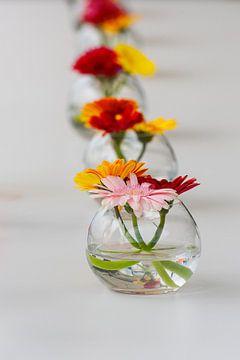 bunt gefütterte Blumen von Youri Mahieu