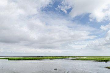 Na regen... van Marnefoto .nl