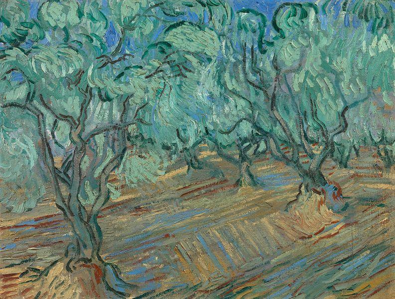 Vincent van Gogh, Olijfgaard van 1000 Schilderijen