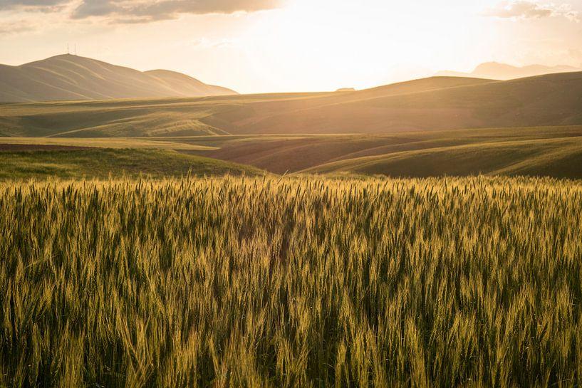 Golden sunset van Jeroen Kleiberg