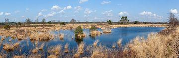 Grensnatuurpark De Plateaux van DuFrank Images