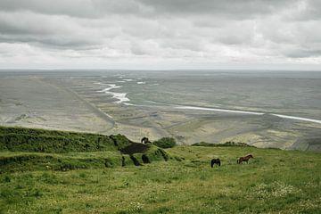 Islandpferde | Auf einem Roadtrip durch die schönsten Landschaften von Floor Bogaerts