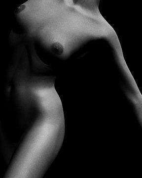 Naakte vrouw – Naakt studie van Jamie No 4 van Jan Keteleer