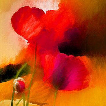 Classical Poppys