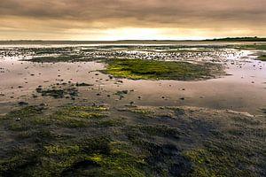 Zonsondergang over de waddenzee bij eb van