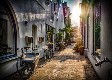 Mooi Haarlem van Natascha Worseling