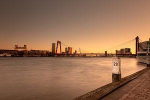 Drie Rotterdamse bruggen tijdens het gouden uur van