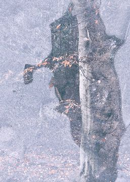 TreeArt van Loulou Beavers