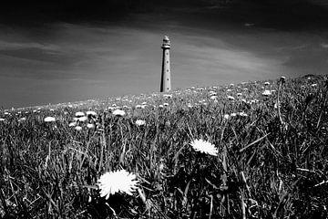 Leuchtturm, niederländische Küste (Schwarz-Weiß)