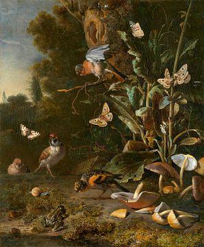 Vogels, vlinders en een kikker onder planten en schimmels, Melchior d'Hondecoeter