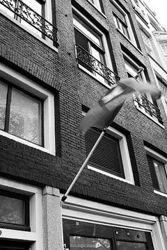 Amsterdam fahne von Kim Staneke