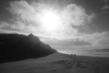 Tegen licht over de duinen. van ToeK !