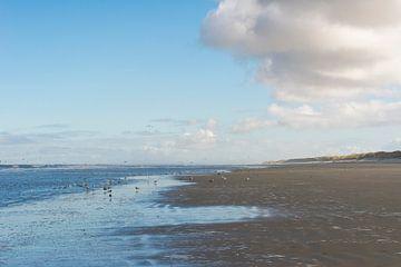 Strand Ameland von Yorrit v.d.Kaa