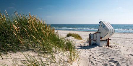 Noordzee - Strandstoel met stralend Duingras