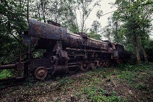 Een oude verroeste trein van Steven Dijkshoorn