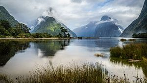Milford sound like a painting