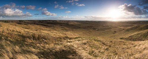 Duinlandschap panorama