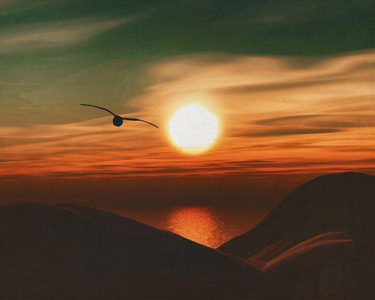 Zeemeeuw bij zonsondergang kust van Jan Keteleer