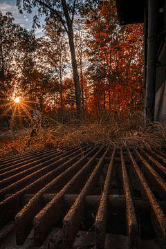 Zonnester op rooster van Marc-Sven Kirsch