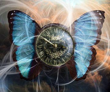 Tijd en beweging van Harald Fischer
