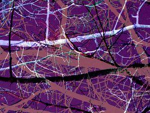 Verhaallijnen van een boom 3