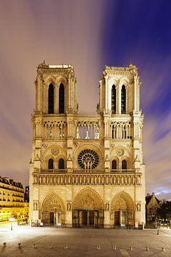 Kathedraal Notre Dame, Parijs van Markus Lange