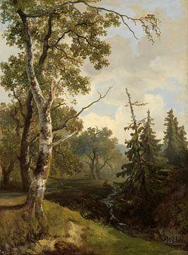 Bosgezicht bij Wolfheze., Johannes Warnardus Bilders