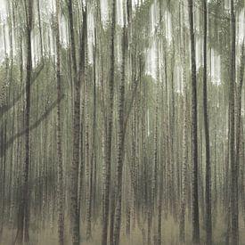 Planken Wambuis Teil 3 von Tania Perneel