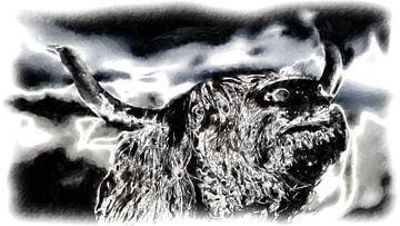 Schottischer Highlander von Maurice Dawson