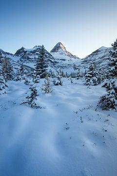 Kanada sneeuw landschap rust van Remco van Adrichem