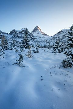 Kanada Schneelandschaft Ruhe
