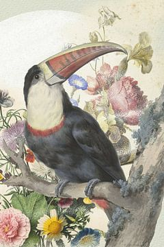 Toucan pour une nature morte de fleurs et de la lune sur Jadzia Klimkiewicz
