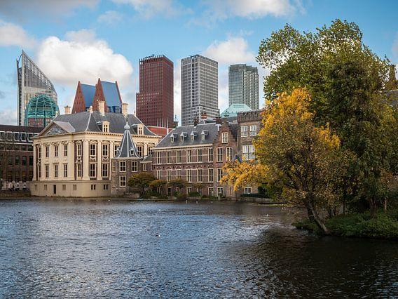 Den Haag - De Hofvijver - 5