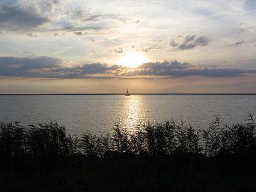 Lonely Sailboat van