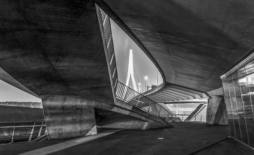Onder de Erasmusbrug in Rotterdam van MS Fotografie