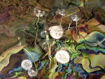 Pusteblumen  im Wind van Heidrun Carola Herrmann