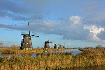 Rij molens Kinderdijk Nederland van My Footprints