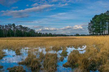 Mooi zicht over de Leersumsche Veld met fantastische lucht van Patrick Verhoef