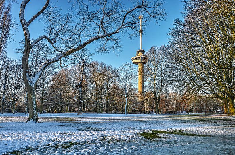 Winter in het Park bij de Euromast van Frans Blok