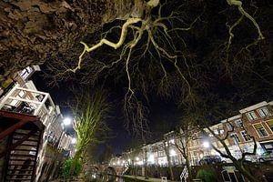 De Oudegracht met de Smeebrug op de achtergrond in Utrecht