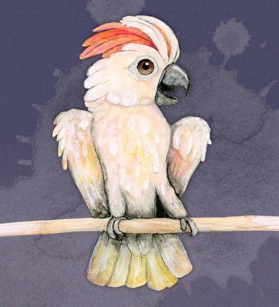Molukkischer Kakadu von Bianca Wisseloo