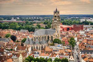 De Sint-Salvatorkathedraal van Brugge van Jim De Sitter