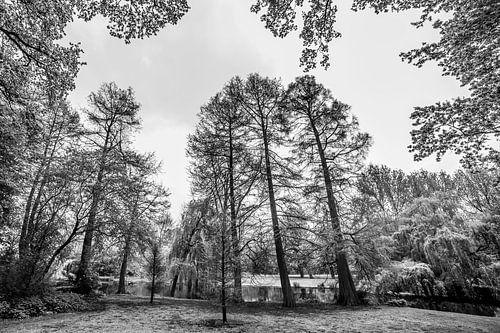 Vondelpark in Zwart-wit