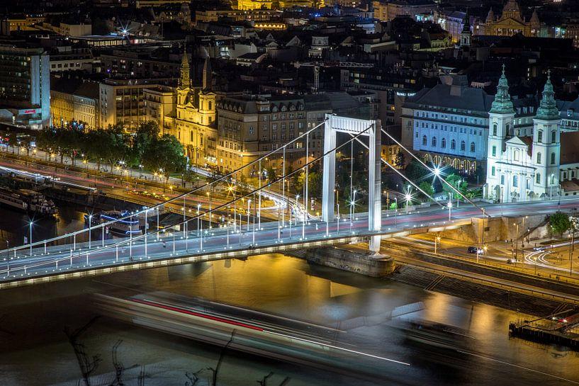 Bridge over the Danube van Julian Buijzen