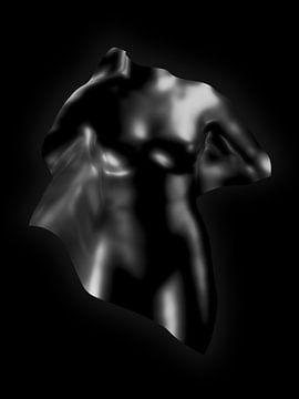 Vrouwelijke vormen van Jörg Hausmann