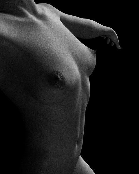 Naakte vrouw – Naakte studie van Jamie dansend van Jan Keteleer