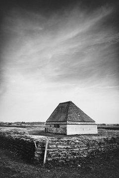 Texel XIX von Steven Goovaerts
